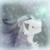 :iconshadowwolf1292: