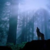 :iconshadowwolfsblood: