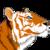 :iconshameri-tigress: