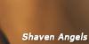 :iconshaven-angels: