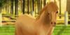 :iconshetland-pony-harpg: