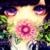 :iconshiikumaster: