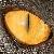 :iconshimbow:
