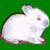 :iconshirousa: