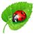 :iconshrub420: