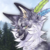 :iconsilver--moon--wolf: