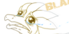:iconsilver-the-raptor:
