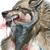 :iconsilverwolfpsycho: