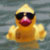 :iconsimplyducky: