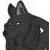 :iconsin-wolf: