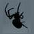 :iconsins-raven: