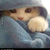 :iconsir-marshmallow40: