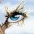 :iconskincanvas5290: