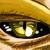:iconskulker87: