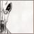 :iconskybugs: