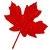 :iconsmaple: