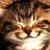 :iconsmile-imight2: