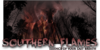 :iconsouthern-flames: