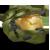 :iconspartan-ex117: