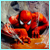 :iconspidermanimg: