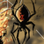 :iconspiders-art: