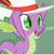 :iconspike-dragone: