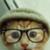 :iconspndemonkat:
