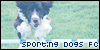 :iconsporting-dogs: