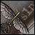 :iconsquare1design:
