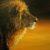 :iconstar-lion: