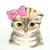 :iconstarfire0515: