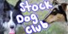:iconstock-dog-club: