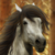 :iconstorms-and-lightning:
