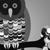 :iconstupid-owl: