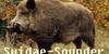 :iconsuidae-sounder: