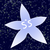 :iconsuika-star: