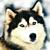 :iconsukez0r: