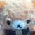 :iconsukisaur: