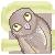 :iconsunny-owl: