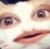 :iconsupbuddyboy: