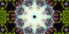 :iconsuper--symmetry:
