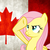 :iconsupercanadianflutter: