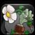 :iconsupmar64: