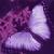 :iconsweet-bruisingskin:
