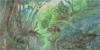 :icontamamayu-forest: