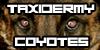 :icontaxidermy-coyotes: