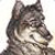 :icontehlone-wolf: