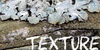 :icontexture-photos: