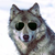 :iconthat-guy-with-shades: