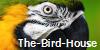 :iconthe-bird-house: